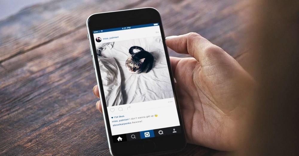Где лучше разместить рекламу в Instagram